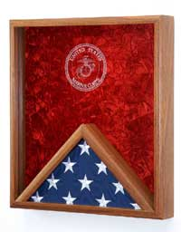 veterans flag case